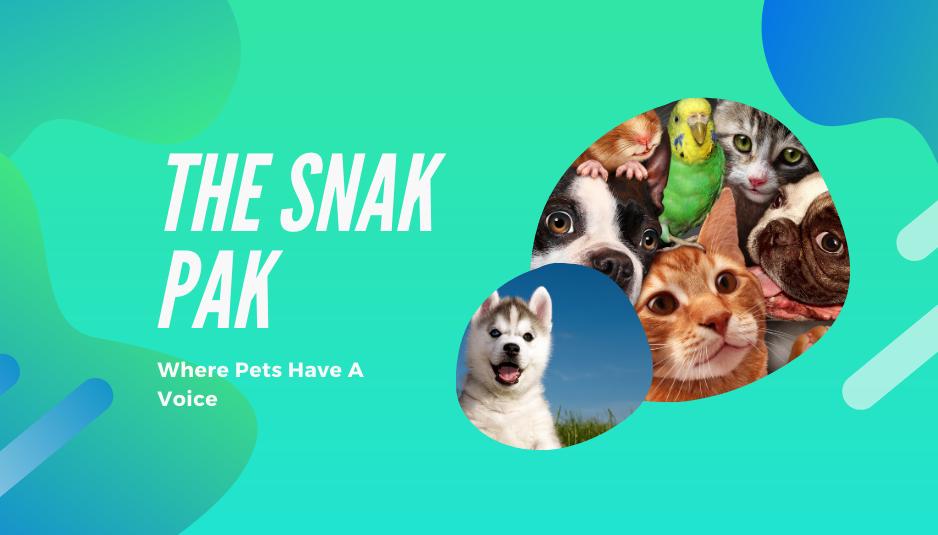 TheSnakPak Pet Store